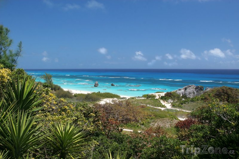 Fotka, Foto Pohled na Atlantik (Bermudy)