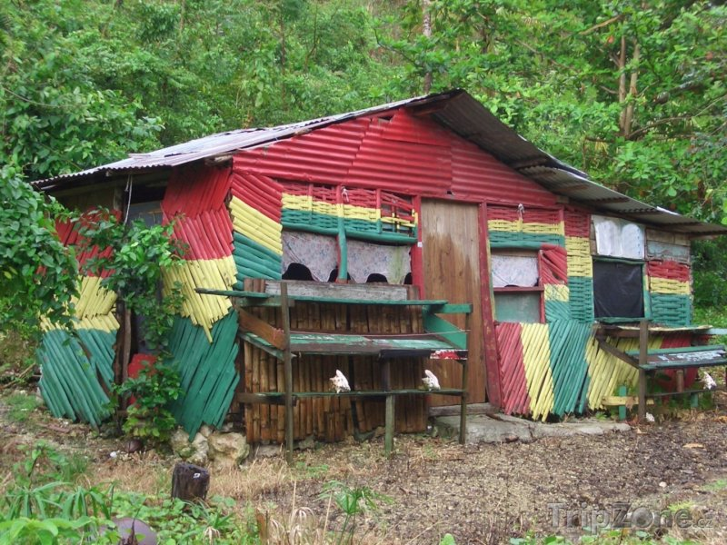 Fotka, Foto Rastamanův domek v Porto Antoniu (Jamajka)
