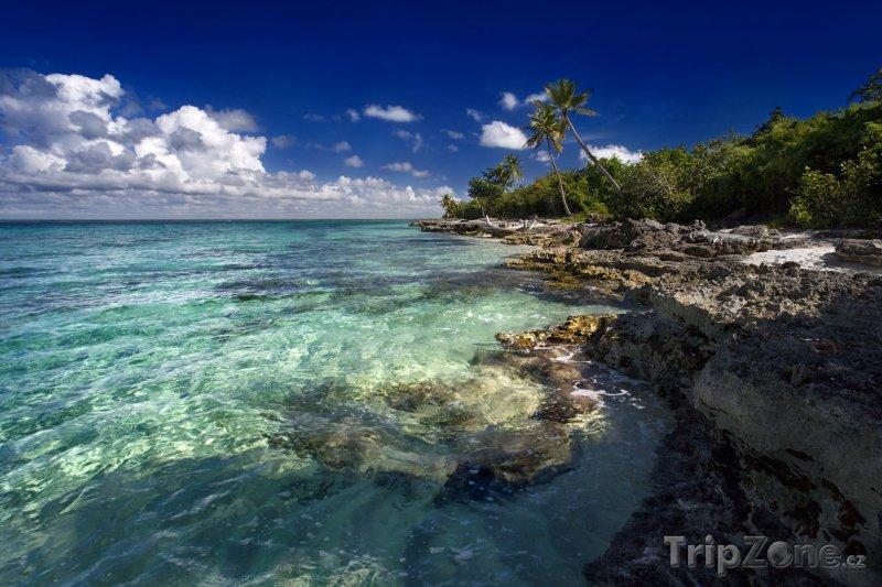 Fotka, Foto Skalnaté pobřeží (Dominika)