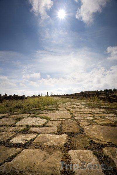 Fotka, Foto Stará římská cesta v Timgadu (Alžírsko)