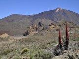 Tenerife, sopka El Teide
