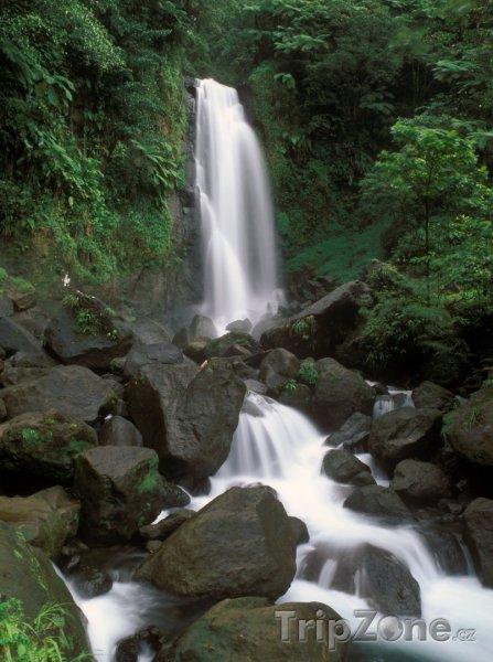 Fotka, Foto Trafalgar falls v Národní parku Morne Trois Pitons (Dominika)