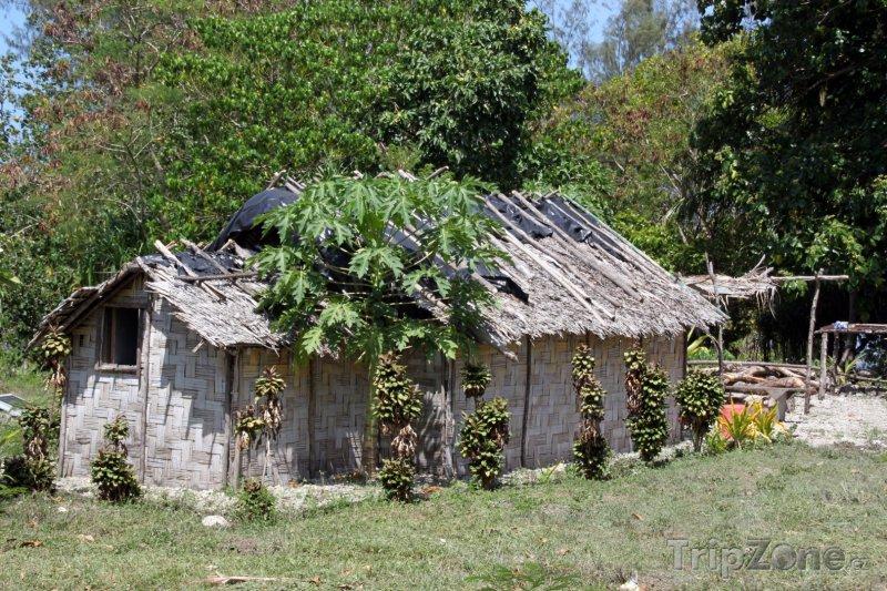 Fotka, Foto Chýše na ostrově Efate (Vanuatu)