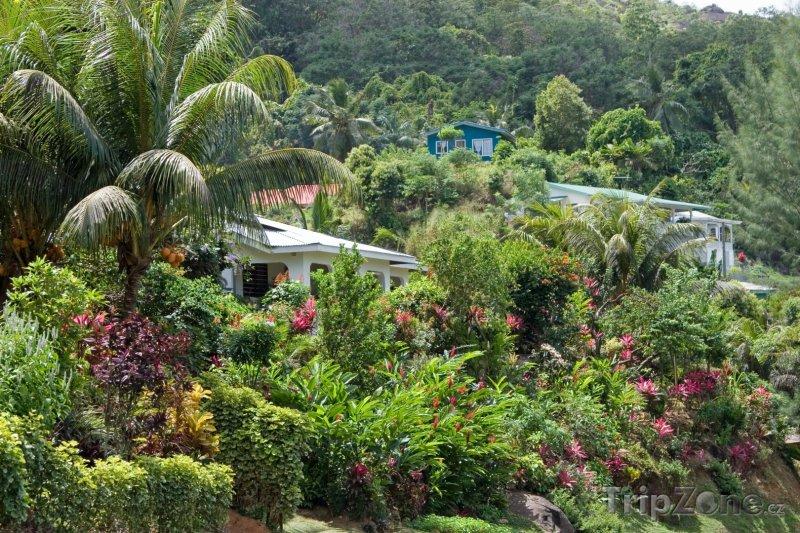 Fotka, Foto Domy na ostrově Mahé (Seychely)