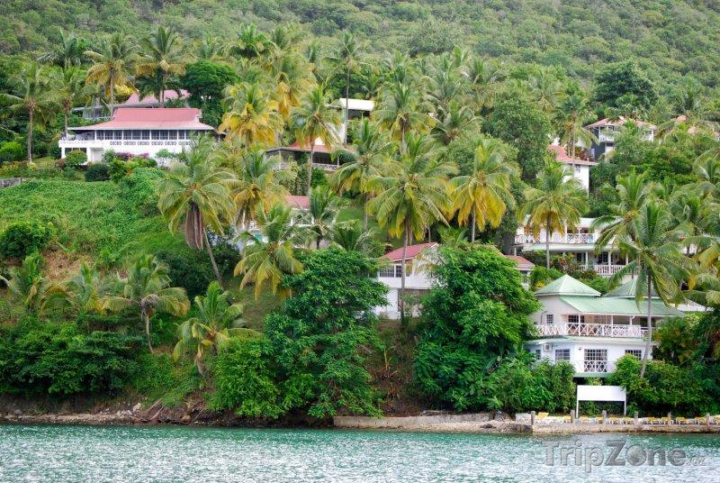 Fotka, Foto Domy v Roseau Bay (Svatá Lucie)