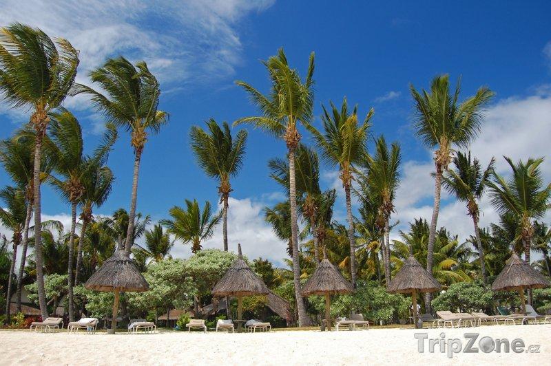 Fotka, Foto Flic En Flac, lehátka se slunečníky na pláži (Mauricius)