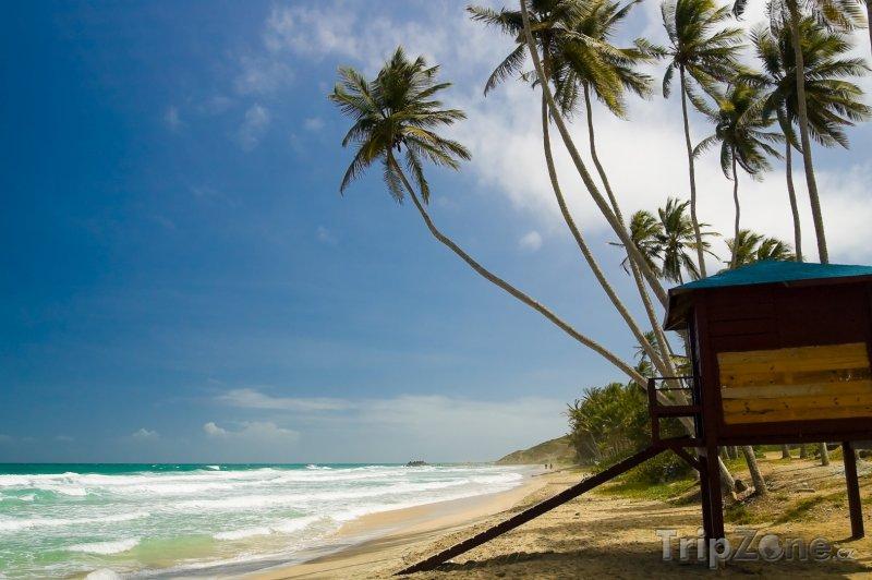 Fotka, Foto Isla de Margarita, pláž La Galera (Venezuela)