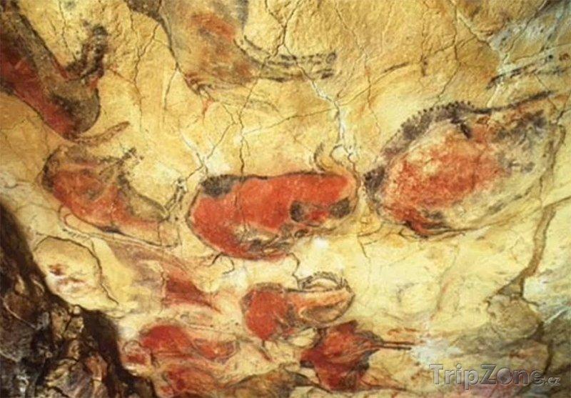 Fotka, Foto Jeskyně Altamira, malby na stěnách (Španělsko)