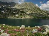 Jezero Bucurat v národním parku Retezat