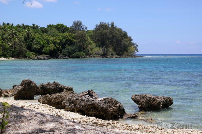 Fotka, Foto Korály na plážii ostrova Efate (Vanuatu)