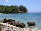 Korály na plážii ostrova Efate