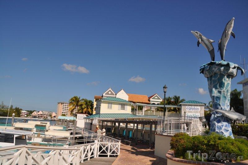 Fotka, Foto Lucaya, přístav (Bahamy)