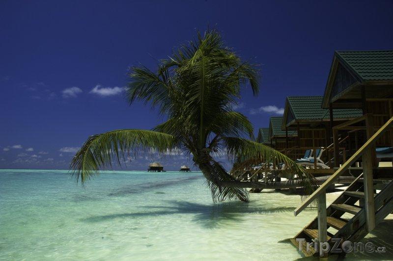 Fotka, Foto Meeru Island Resort (Maledivy)