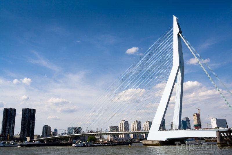 Fotka, Foto Most Erasmusburg v Rotterdamu (Nizozemsko)