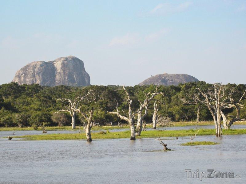 Fotka, Foto Národní park Yala, pohled na Sloní skálu (Srí Lanka)