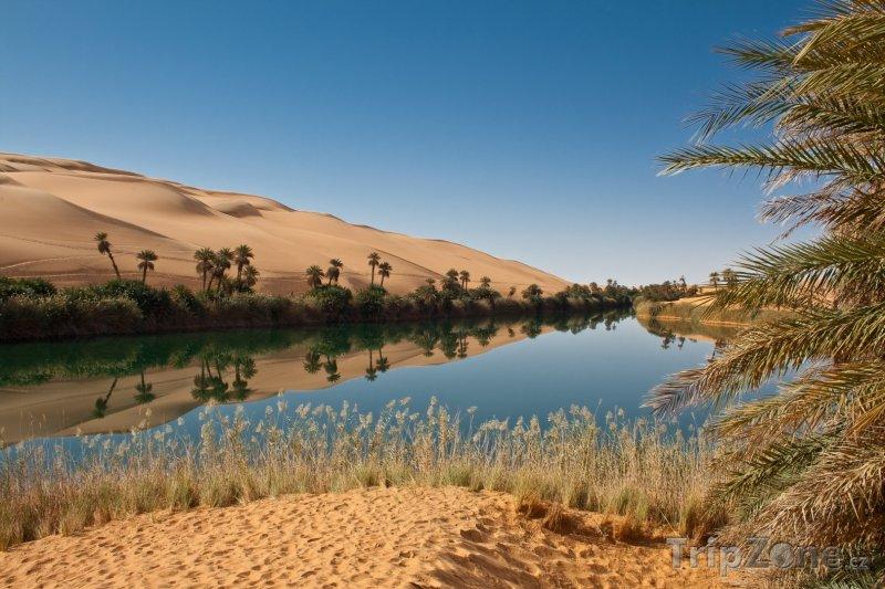 Fotka, Foto Oáza Ubari v Targa Valley (Libye)