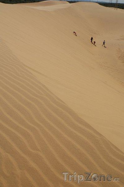 Fotka, Foto Písečné duny v národním parku Médanos de Coro (Venezuela)