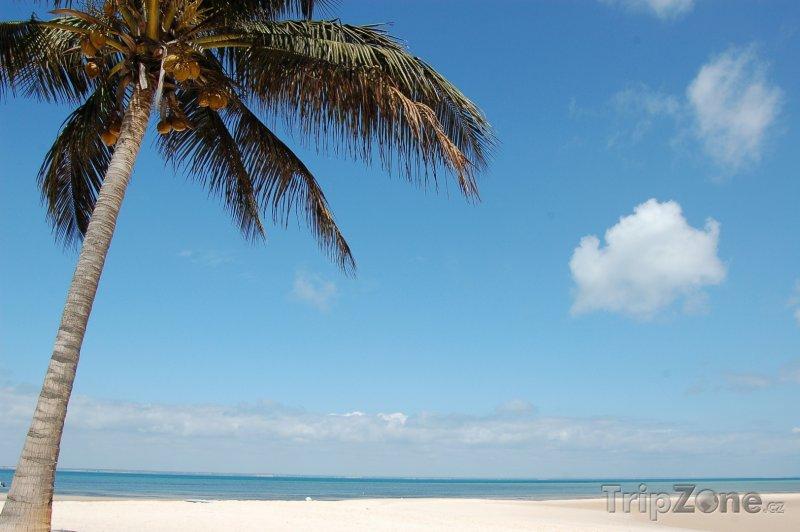 Fotka, Foto Pláž na ostrově Benguerra (Mosambik)