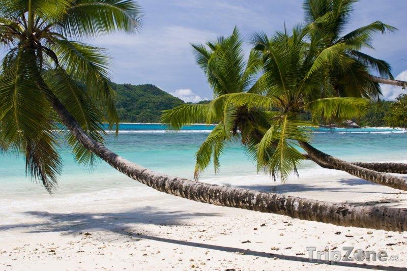 Fotka, Foto Pláž na ostrově Mahé (Seychely)