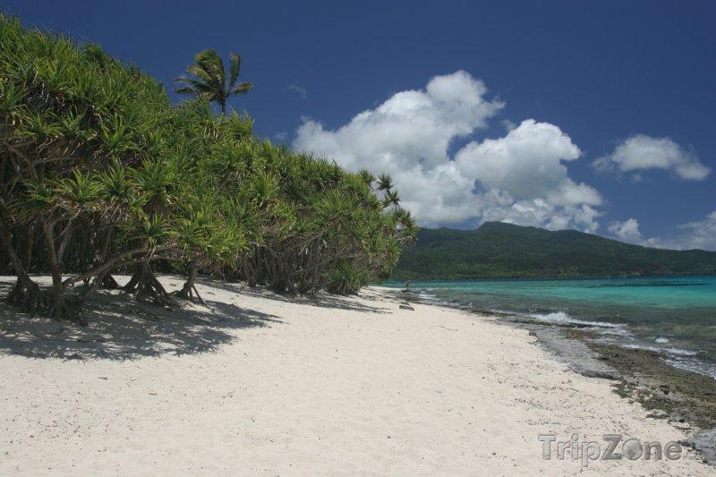 Fotka, Foto Pláž na ostrově Mota (Vanuatu)