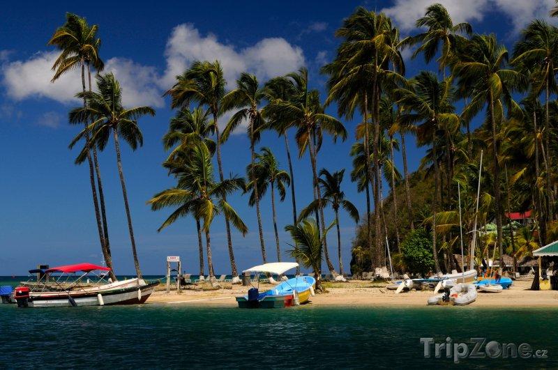 Fotka, Foto Pláž v Marigot Bay (Svatá Lucie)
