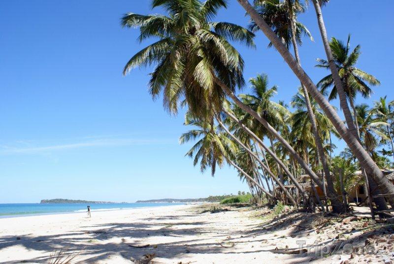 Fotka, Foto Pláž v provincii Uppuveli (Srí Lanka)