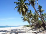 Pláž v provincii Uppuveli