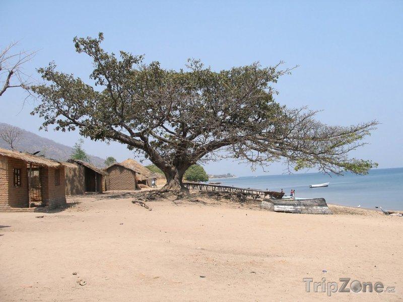 Fotka, Foto Pobřeží jezera Malawi (Malawi)