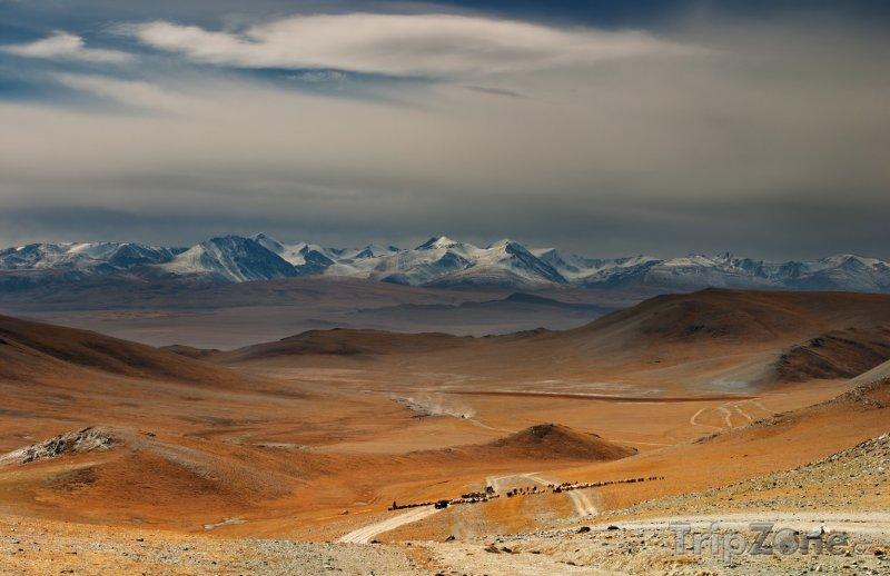 Fotka, Foto Pohoří Changaj (Mongolsko)