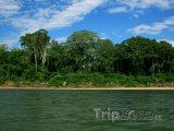 Řeka Amazonka