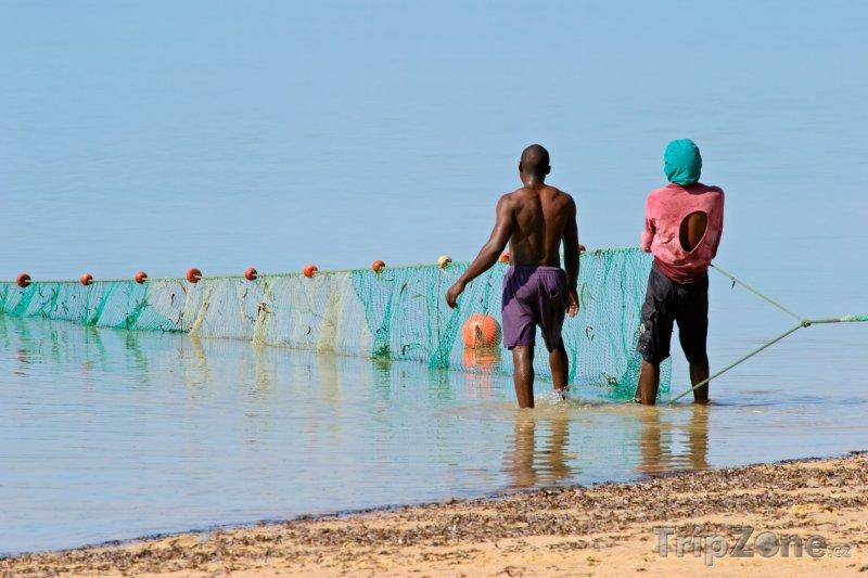 Fotka, Foto Rybáři vytahují síť z moře (Mosambik)
