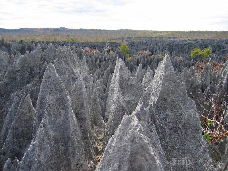 Fotka, Foto Skály v národním parku Tsingy de Bemaraha (Madagaskar)