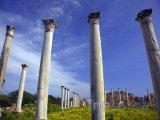 Sloupy římské tělocvičny ve městě Salamis