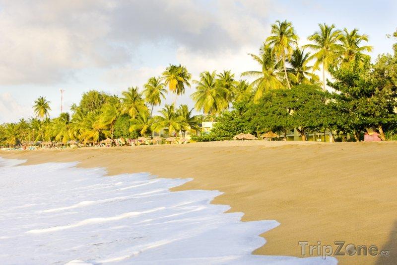 Fotka, Foto Tobago, Turtle Beach (Trinidad a Tobago)