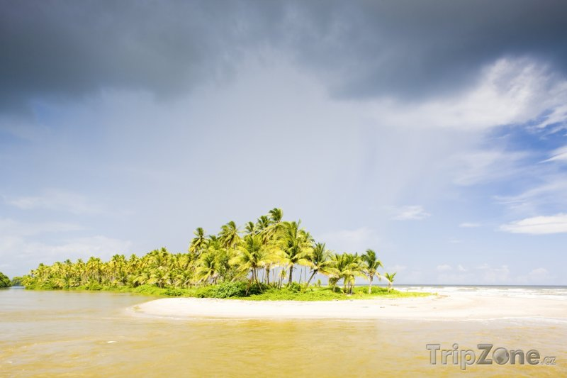 Fotka, Foto Trinidad, Cocos Bay (Trinidad a Tobago)