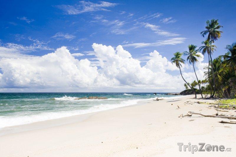 Fotka, Foto Trinidad, Cumana Bay (Trinidad a Tobago)