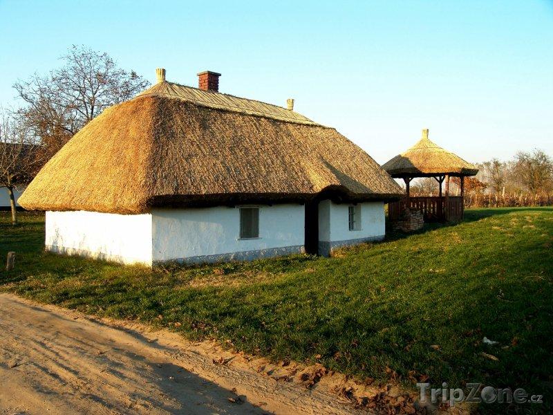 Fotka, Foto Vinný sklep ve vesnici Buzsák (Maďarsko)