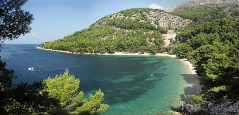 Fotka, Foto Živogošće, pohled na pláž (Makarská riviéra, Chorvatsko)