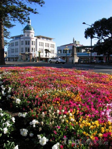 Fotka, Foto Budova T & G v Napieru (Nový Zéland)