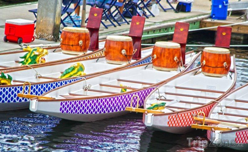 Fotka, Foto Dračí lodě v přístavu (Tampa, USA)