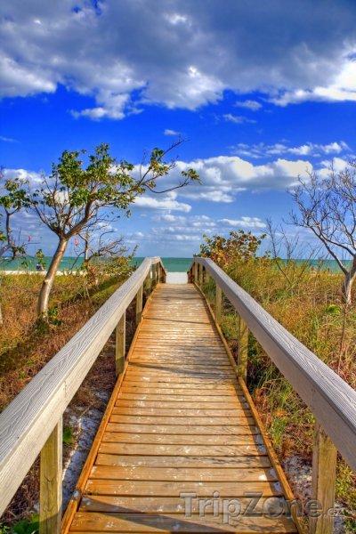 Fotka, Foto Dřevěná lávka na pláž (Tampa, USA)