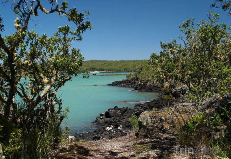 Fotka, Foto Islington Bay na ostrově Rangitoto (Auckland, Nový Zéland)