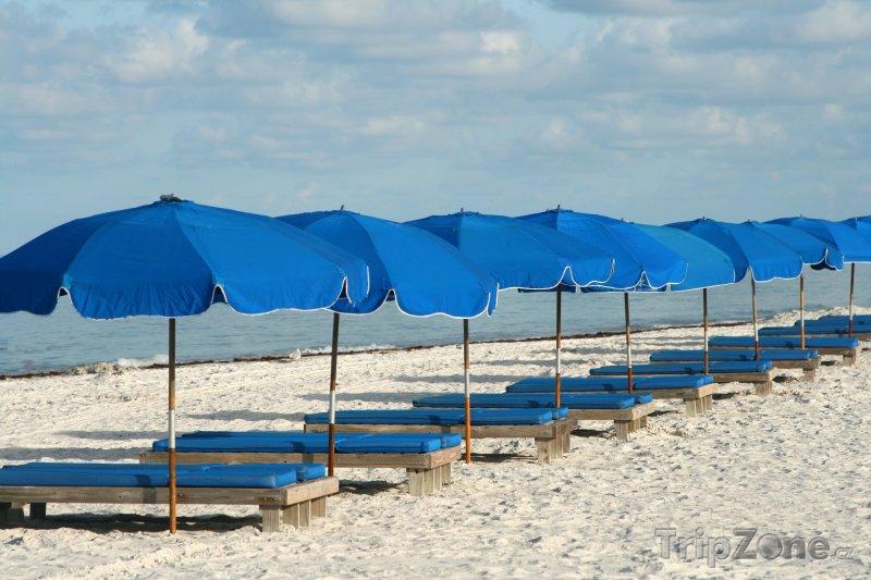 Fotka, Foto Lehátka a slunečníky na pláži (Tampa, USA)