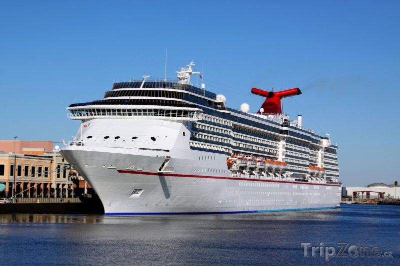 Fotka, Foto Luxusní výletní loď v Port of Tampa (Tampa, USA)