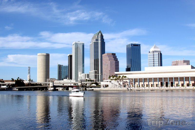 Fotka, Foto Mrakodrapy v obchodním centru města (Tampa, USA)