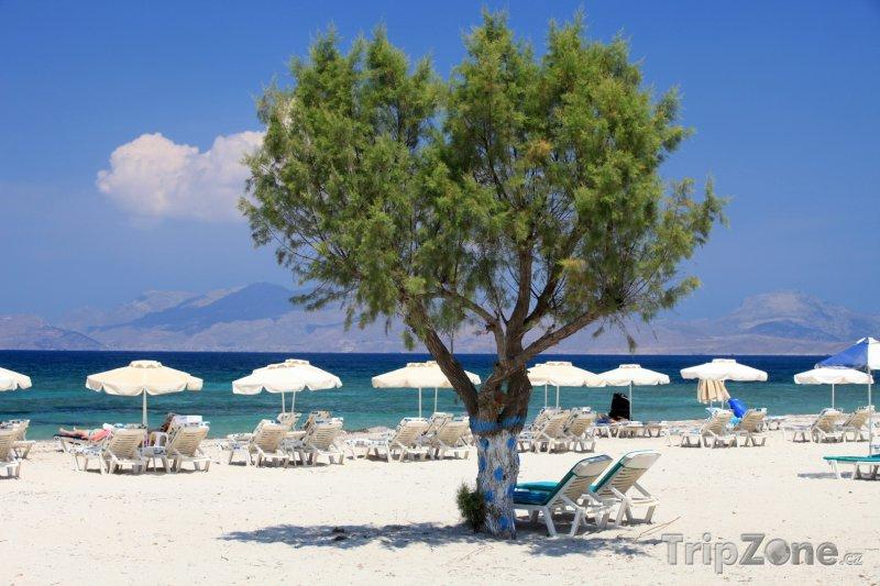 Fotka, Foto Pláž v letovisku Mastichari (Řecko)