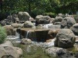 Potok v Inman Parku
