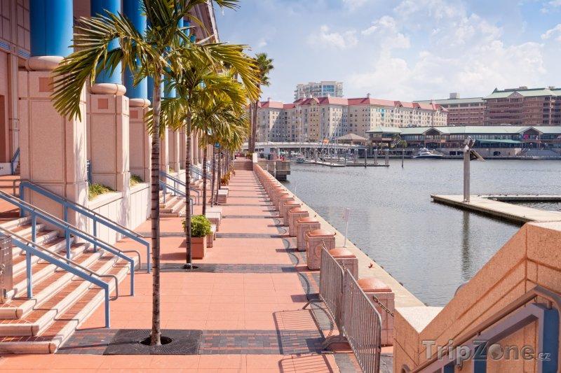 Fotka, Foto Promenáda u Kongresového centra (Tampa, USA)