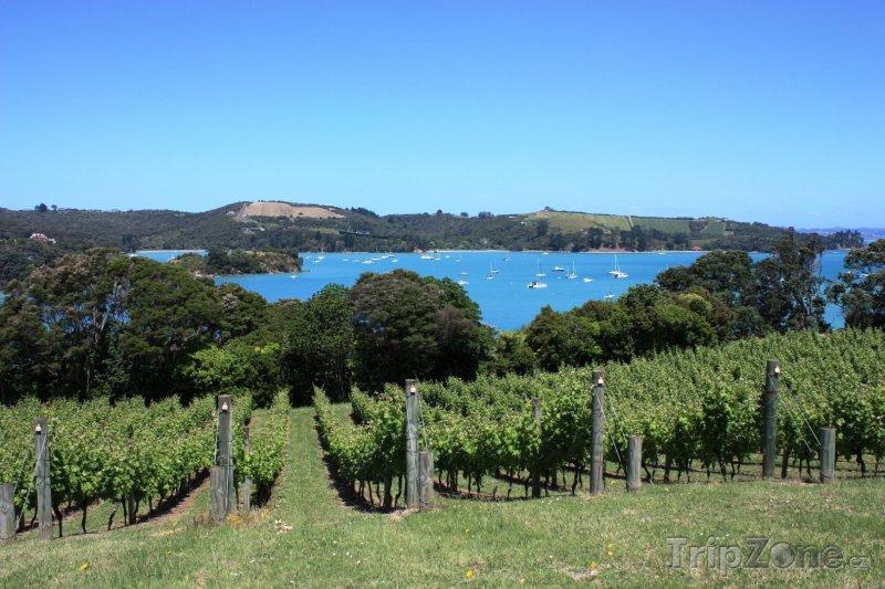 Fotka, Foto Putiki Bay na ostrově Waiheke (Auckland, Nový Zéland)