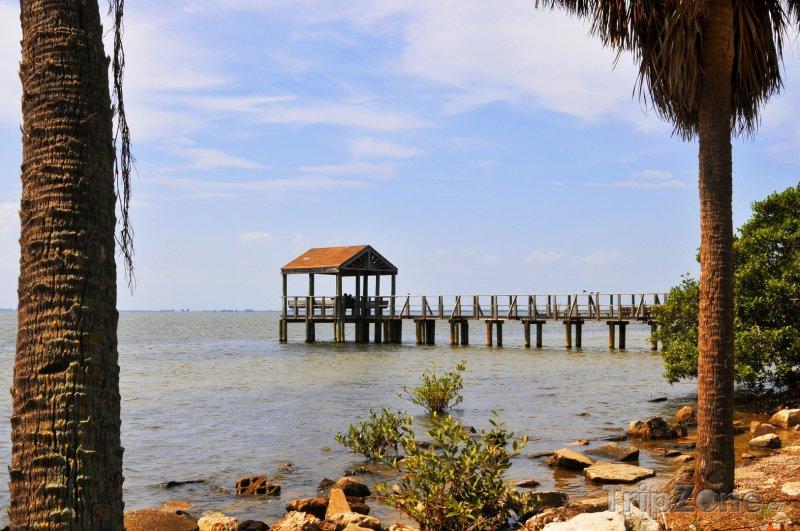 Fotka, Foto Staré dřevěné molo v Tampa Bay (Tampa, USA)